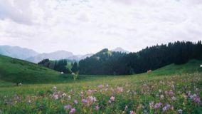 风景秀丽 鸡冠山乡