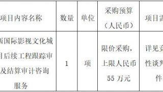 江西国际影视文化城项目竞争性谈判公告