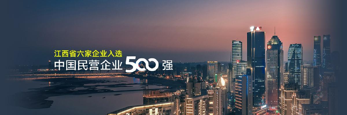 """江西省六家企業入選""""中國民營企業500強"""""""