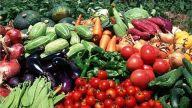 景德镇市农产品质量安全持续保持稳定良好形势