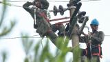 赣州61个省定贫困村全面完成农村电网改造升级