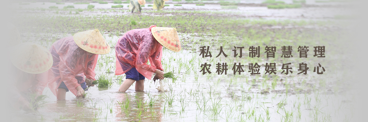 私人訂制智慧管理 農耕體驗娛樂身心