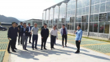 萍乡市政协副主席李勇一行在武功山调研指导扶贫产业发展