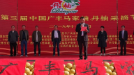 第二届中国广丰马家柚.丹柚采摘节举行