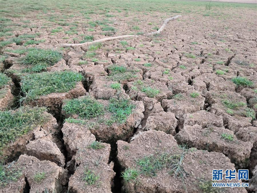 (图文互动)(1)南方部分地区为何持续大旱?