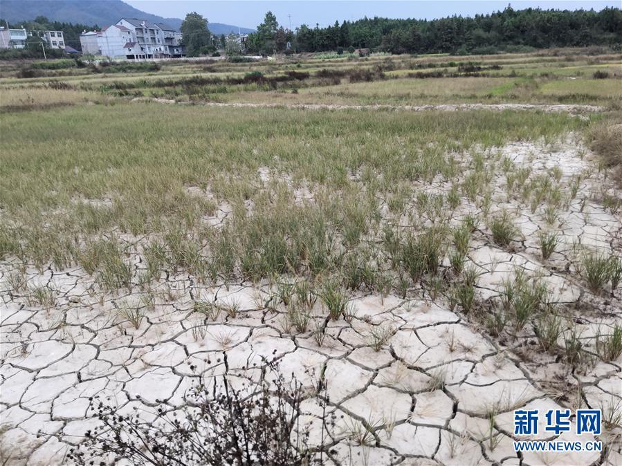 (图文互动)(2)南方部分地区为何持续大旱?