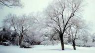 """""""大雪""""首日全国大部雨雪少 气温回升雾霾""""见缝插针"""""""