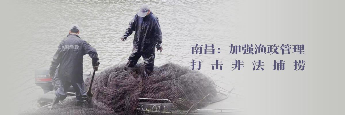南昌:加强渔政管理 打击非法捕捞