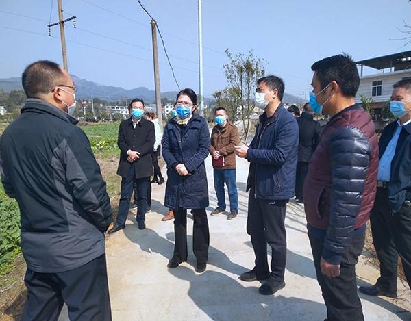 萍乡市委常委、副市长冯文利在富硒油菜基地调研
