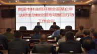 贵溪市林业局召开关于开展全面禁止非法野生动物交易专项整治行动工作方案会