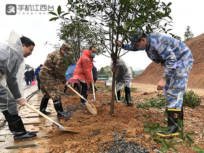 分宜县开展义务植树活动3.12