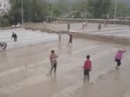 赣州:耕地抛荒两年将暂停补贴 鼓励耕种双季稻