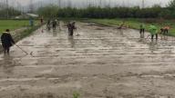 袁州区下浦街道:抢抓农时忙春耕生产