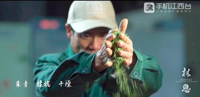 茶叶加工要经过杀青、揉捻、干燥等工序