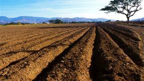 新余市召开受污染耕地安全利用与严格管控工作实施方案专家评审会