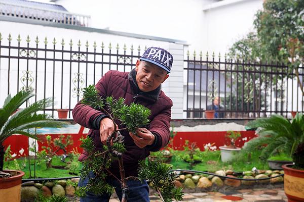 村民刘新文在自家庭院中修剪花草