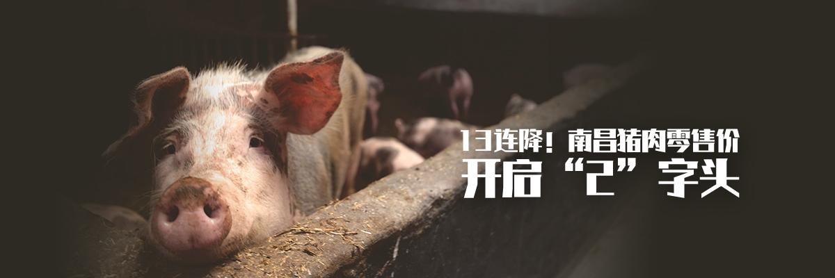 """13连降!南昌猪肉零售价开启""""2""""字头"""