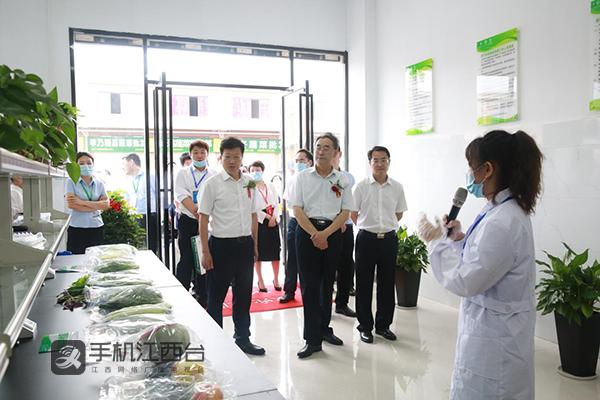 参观考察中国供销·萍乡农产品物流园蔬菜区、水果区以及农产品安全检测中心等