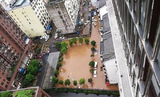 新余市渝水区城区内涝严重,车辆被淹。