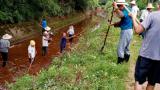 未雨绸缪保用水 吉安县梅塘镇组织村民清淤清障