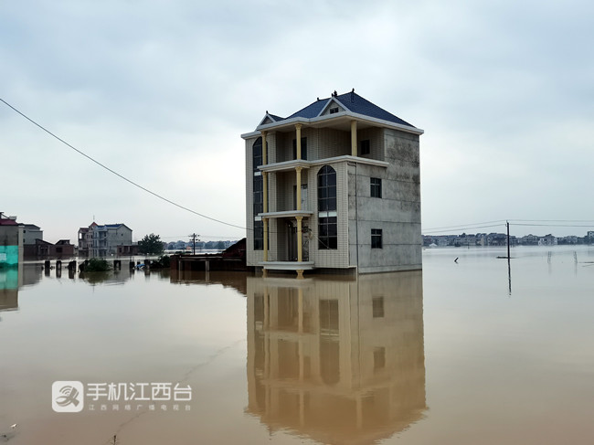 鄱阳县受灾严重,不少庄稼和房子被淹。