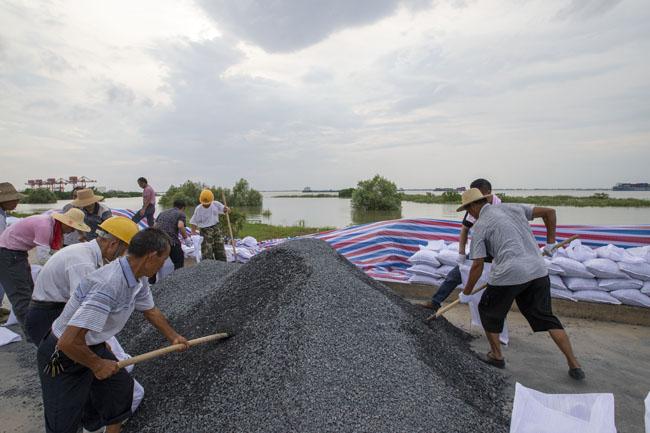 7月11日,长江干堤湖口砂洲堤段,干群齐上阵正在筑堤防汛。