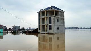 最新!洪涝灾害已致乐虎足球下载473万人受灾,直接经济损失56.4亿元