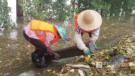 打捞清理树枝杂木及生活垃圾