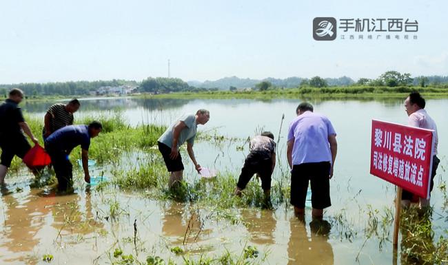 6万尾鲢鱼、鳙鱼投放到十里村黎河流域