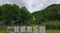 萍乡武功山牧歌农乐园张升超:拼搏创业 永远在路上(图)