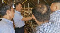 新余市农业农村局加强产业扶贫督导工作