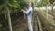 【暖新闻•江西2020】谢家友:以创新发展农业 用真心带动村民致富