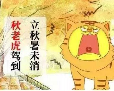 """秋燥、秋感、秋泻!如何应对秋老虎的""""三板斧"""""""