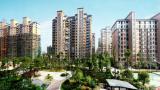 2020年1-8月上饶市房地产开发投资共完成136亿元