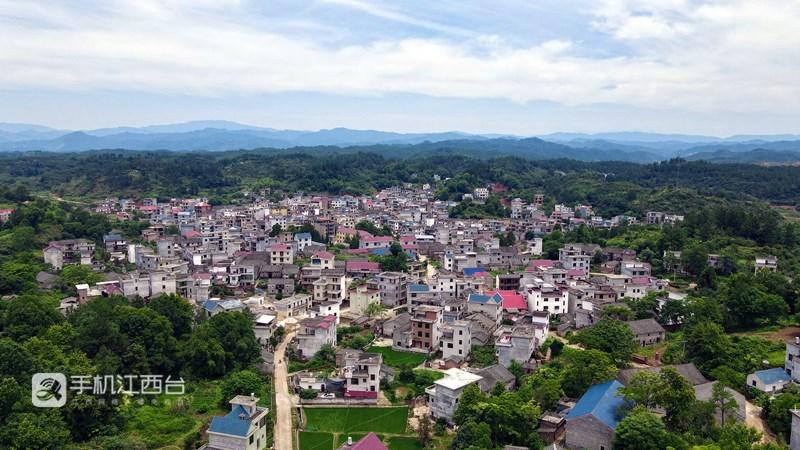 合东村是地处吉安市永新县北部的山区村。左峰华 摄