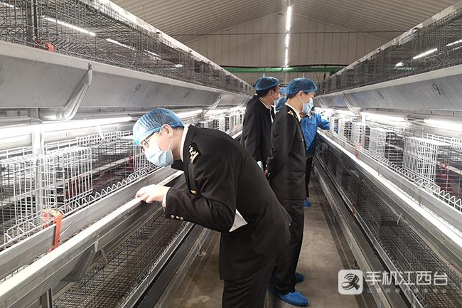 海关进境家禽检疫