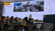 吉安安福县举行小学语文阅读教学优质课竞赛