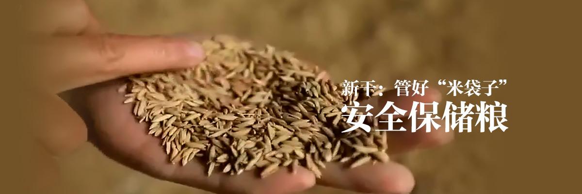 """新干:管好""""米袋子"""" 安全保储粮"""