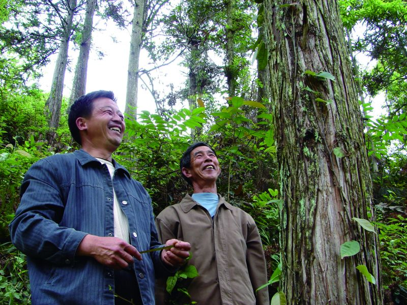 1.江西林农在内心为林权抵押贷款点赞。