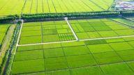 昌江区高标准农田建设快速推进 今年将新建2万亩
