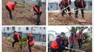 """萍乡白源街新村社区开展""""珍爱绿色  共建美丽家园""""义务植树活动"""