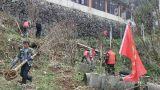鹰潭市贵溪市西窑林场:义务植树  推进生态文明建设