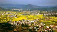 """南繁、本地、外埠""""三位一体"""" 萍乡杂交水稻制种形成大格局"""