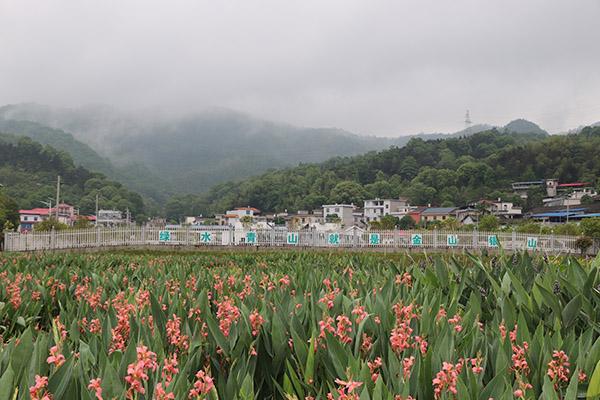 安源村湿地公园