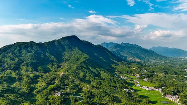 江西修水白岭镇的盛夏田园景色(黄喆摄)