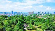 """萍乡湘东区林业局:""""节""""尽所""""能"""" 添绿降碳"""