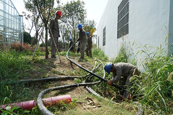 电力施工人员蔓谷田园综合体在铺设低压电缆(聂飞 摄)