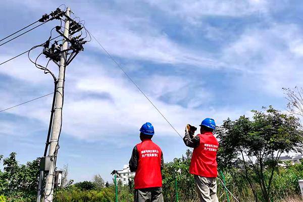 电力党员服务队巡视保电核心区域的10千伏线路(董照明 摄)