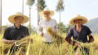 """萍乡武功山:这片希望的田野上 他们是""""最可爱的人"""""""