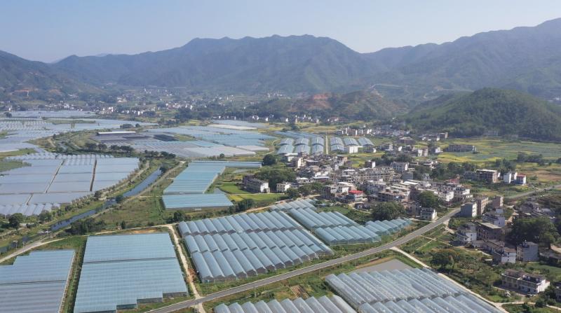 九江银行大力支持赣州蔬菜产业发展